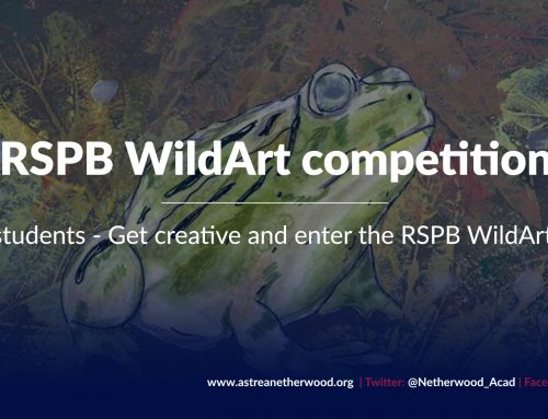 RSPB WildArt Competition